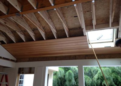 Skylight in new porch addition